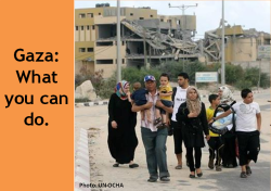 gaza_what_you_can_do